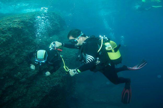 Submarinismo Cap de Creus a Cala Montjoi