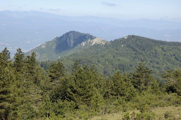Pico Natural Park Albera Orellana