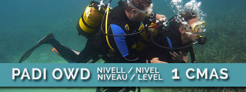 padi-OWD-submarinisme-busseig-costa-brava