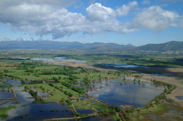 Parc Natural dels Aiguamolls de l' Empordà